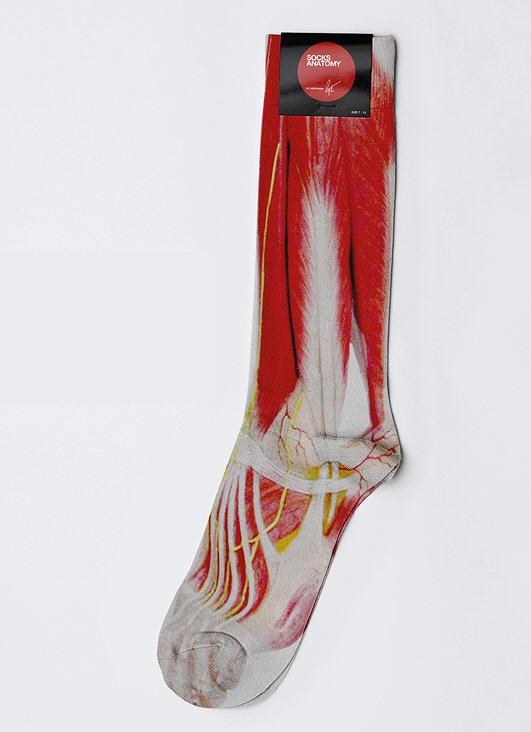anatomy socks